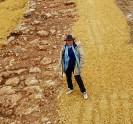 דרך בת 2000 שנה נחשפה באזור בית שמש